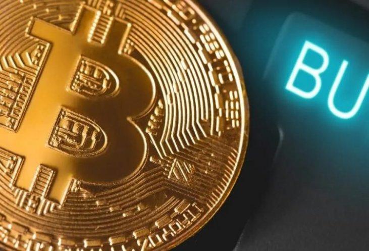Wallet di criptovalute: i Migliori Portafogli per Bitcoin e Crypto